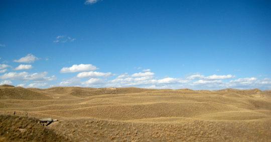 Sandhills-Landscape
