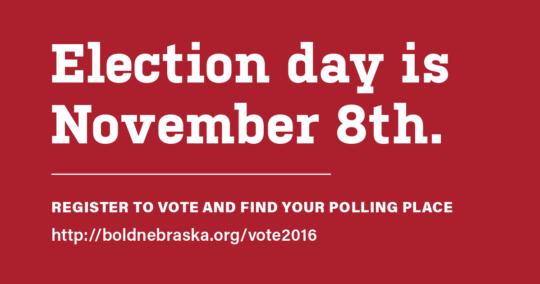 basicvoter_bold-electionday