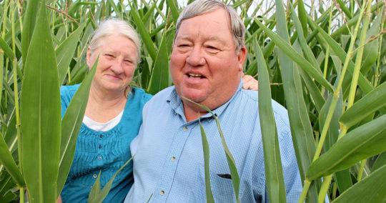 Ponca Sacred Corn   Bold Nebraska